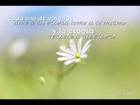 IMG_2971